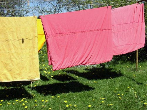 clothes line laundry meadow