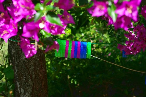 clothespins farbenspiel colorful