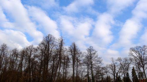 debesis,debesys,mėlynas,mėlynas dangus,spalvos,ruduo,saulės šviesa,gamta