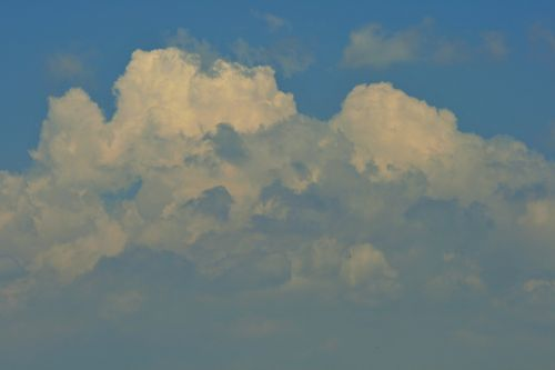 Cloud Building Bulk