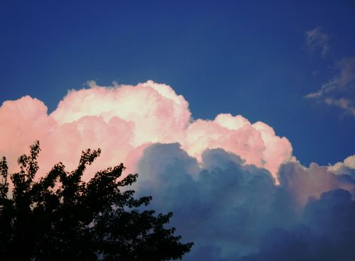 Cloud In Pink And White