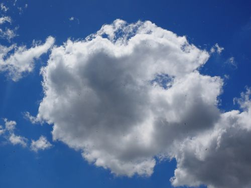 debesys,dangus,mėlynas,balta,vasaros diena,saulėta diena,saulėtas,kubo debesys,cumulus humilis,cumulus mediocris,cumulus,cumulus cloud