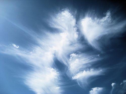clouds birds beauty