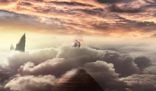clouds  wooden bridge  elephant