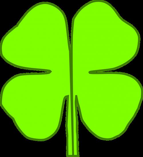 clover green luck