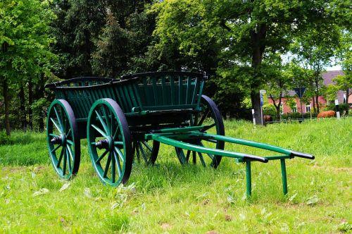 coach wood green