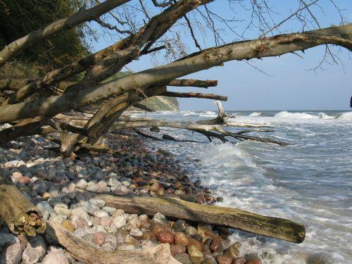 coast island rügen