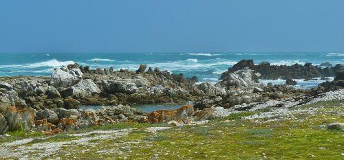 coast sea surf