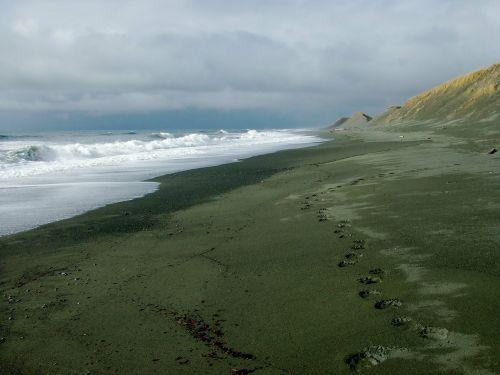 coastline alaska coast