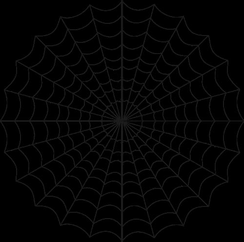 cob web spiderweb spider's web