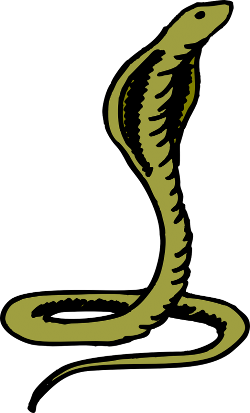 cobra head green
