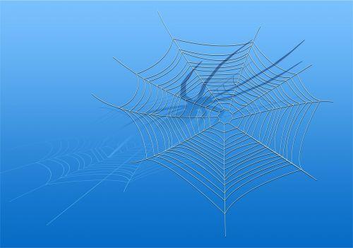 cobweb spider blue