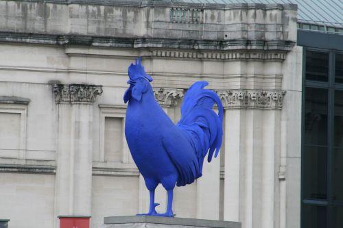 cock london blue