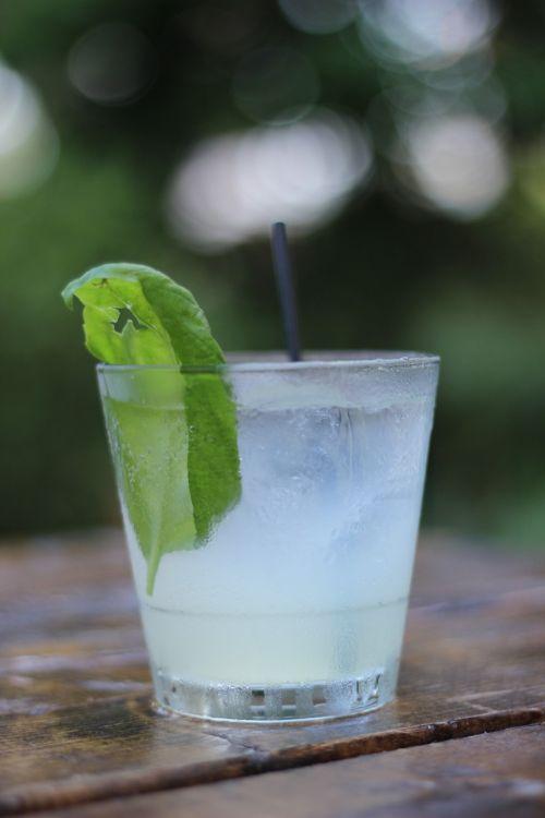 cocktail drink beverage