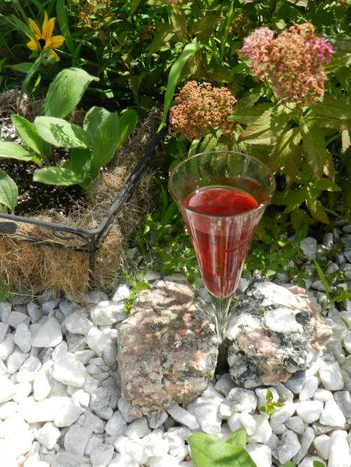 Hummingbird Cocktail