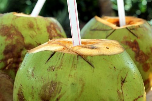 coco coconut water cocktail
