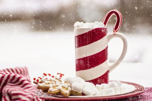 cocoa hot chocolate candy cane