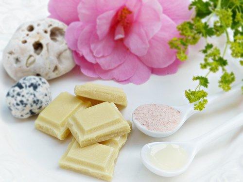 cocoa butter  salt  oil