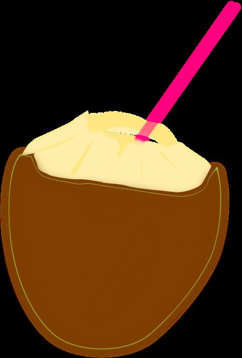 kokoso,kokoso pienas,atogrąžų gėrimas,gėrimas,šiaudai,kokoso luobelė,kokteilis,nemokama vektorinė grafika