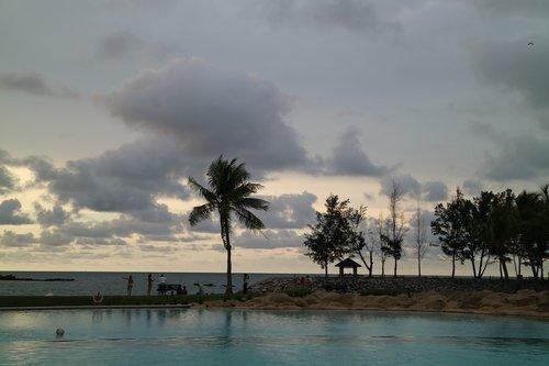 coconut  resort  sunset