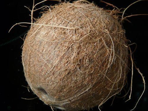kokoso,kokosai,egzotiškas,saldus,delnas,Viduržemio jūros,maistas,drupe,skanus,valgyti,kokoso pluoštai,kokoso lukštas,akmens dubuo