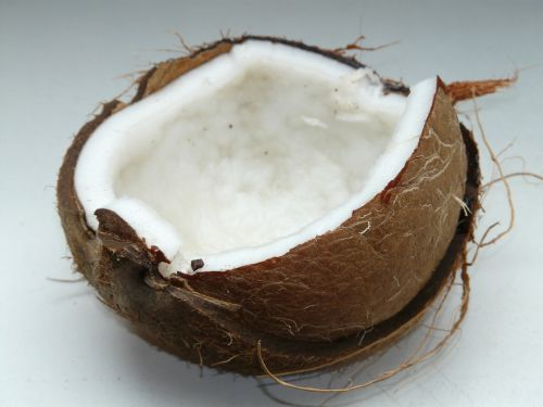 kokoso,kokosai,egzotiškas,saldus,delnas,Viduržemio jūros,maistas,drupe,skanus,valgyti,atviras,minkštimas,balta,kokoso pluoštai,kokoso lukštas,akmens dubuo
