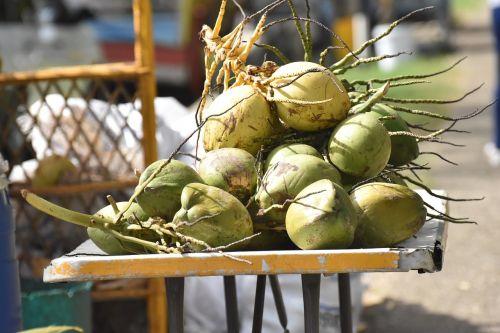coconuts vendor raw