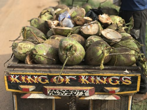 coconuts ghana st