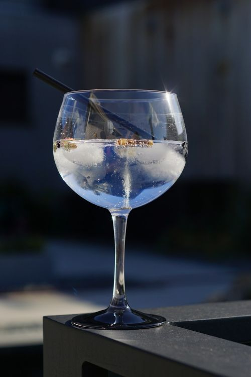 coctail gin tonic summer