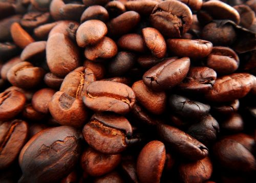 coffe grains coffee brown