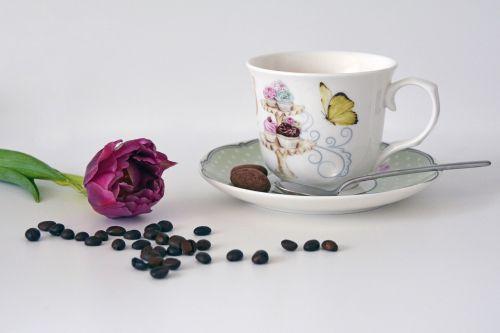 kava,kavos puodelis,Labas rytas,gerti,pertrauka,maistas,tulpė,kavos pupelės,pavasario karščiavimas,pavasaris,kavos pertraukėlė