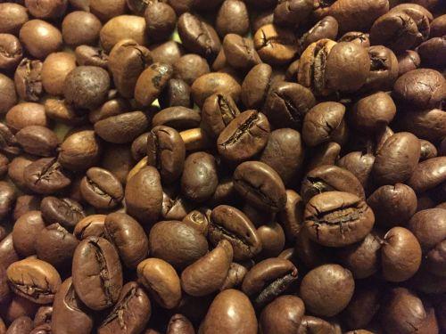 coffee grain brown