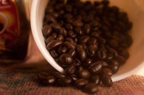 coffee beans bowl