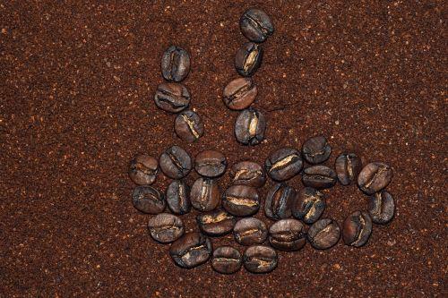 coffee coffee cup cafe