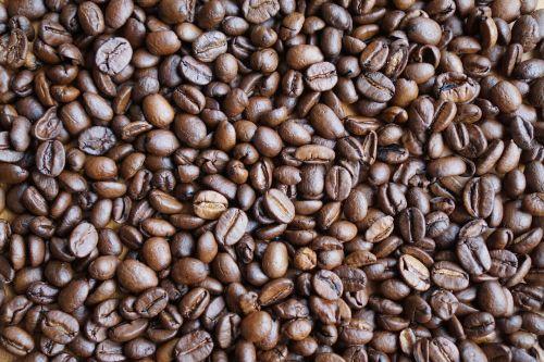 coffee coffee beans grains