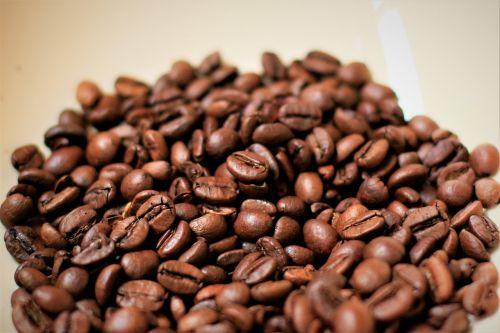 kava,pupos,co,kavos pupelė,kavos pupelės,skrudinta,kofeinas,ruda,kavinė,kofeinas,komfortas,šiltas
