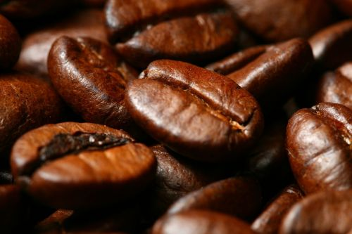 coffee food drink