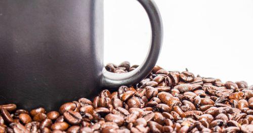 coffee seed drink