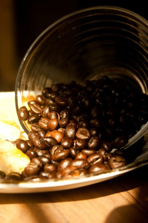 coffee coffee beans roasted
