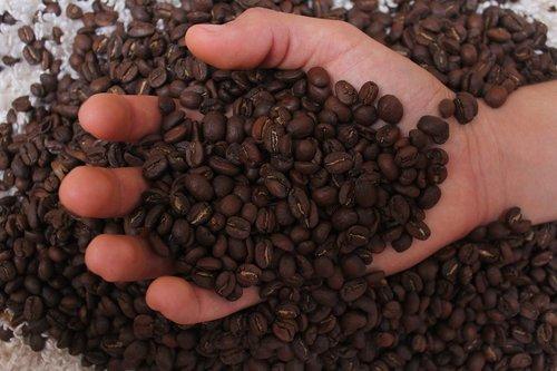 coffee  coffe  drink
