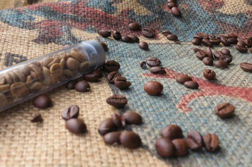 coffee coffee beans green coffee