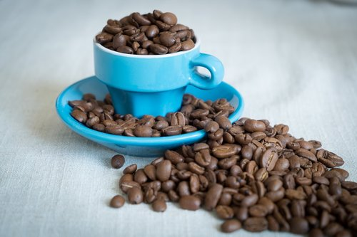 coffee  beans  arabica
