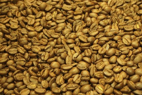 coffee bean roasting