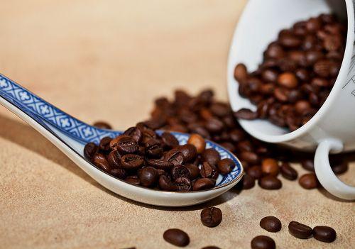 coffee coffee beans grain coffee