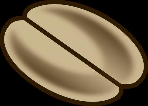coffee bean drawing brown