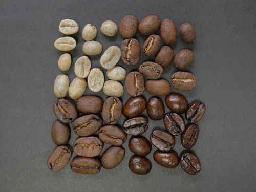 coffee beans square divisions