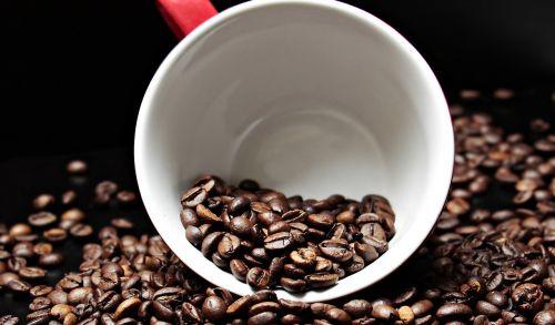 kavos pupelės,kavos puodelis,taurė,kava,malonumas,pupos,kofeinas,naudos iš,porcelianas,skrudinta,gerti,kavinė,pupelės kavos,kavos puodeliai,maistas,žemėlapis,atvirukas,atvirukas,pakvietimas,stimuliatorius