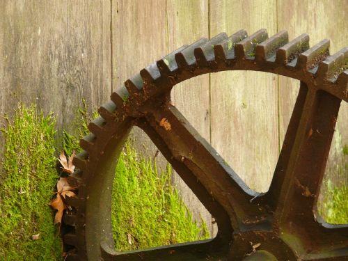 cog cog wheel gear