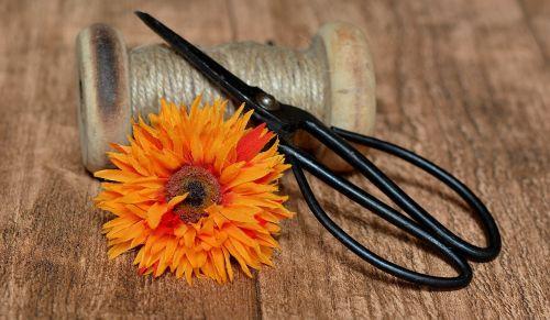 coil wooden reel plastic flower