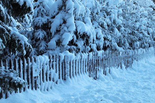 cold  fencing  snow